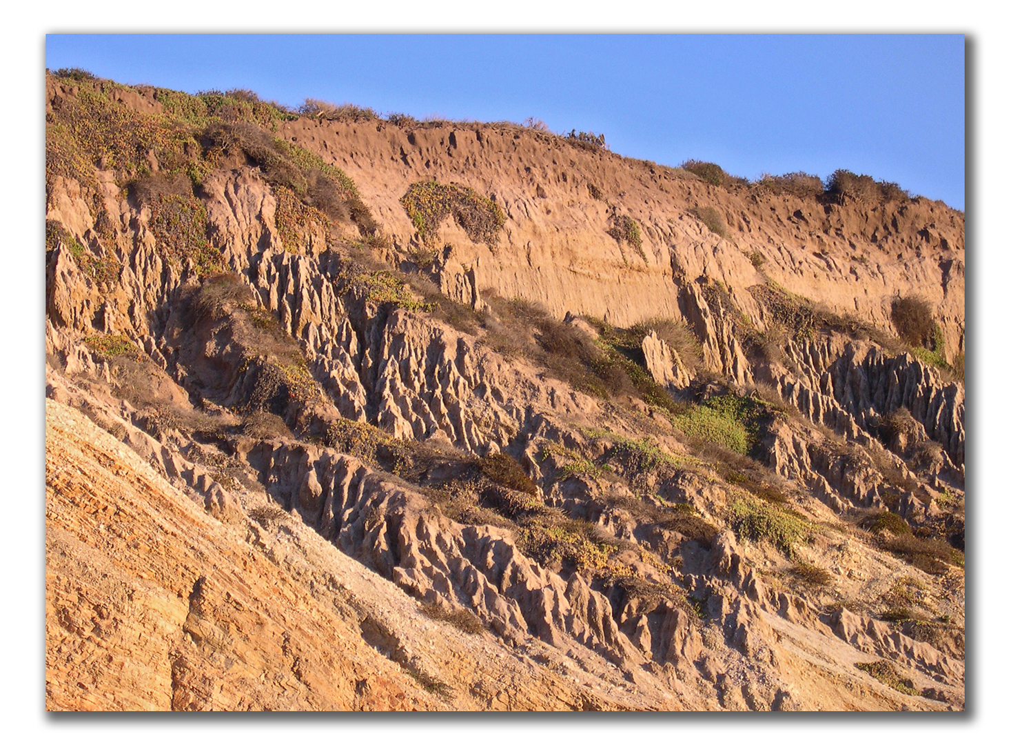 rain-eroded spires in sandy cliff