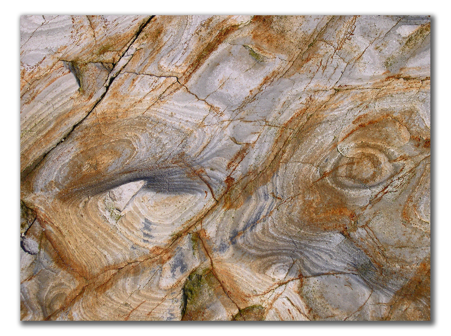 sedementary rocks wave-polished in sensuous curves