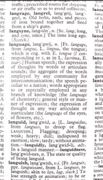 photo of a page in a dictionary